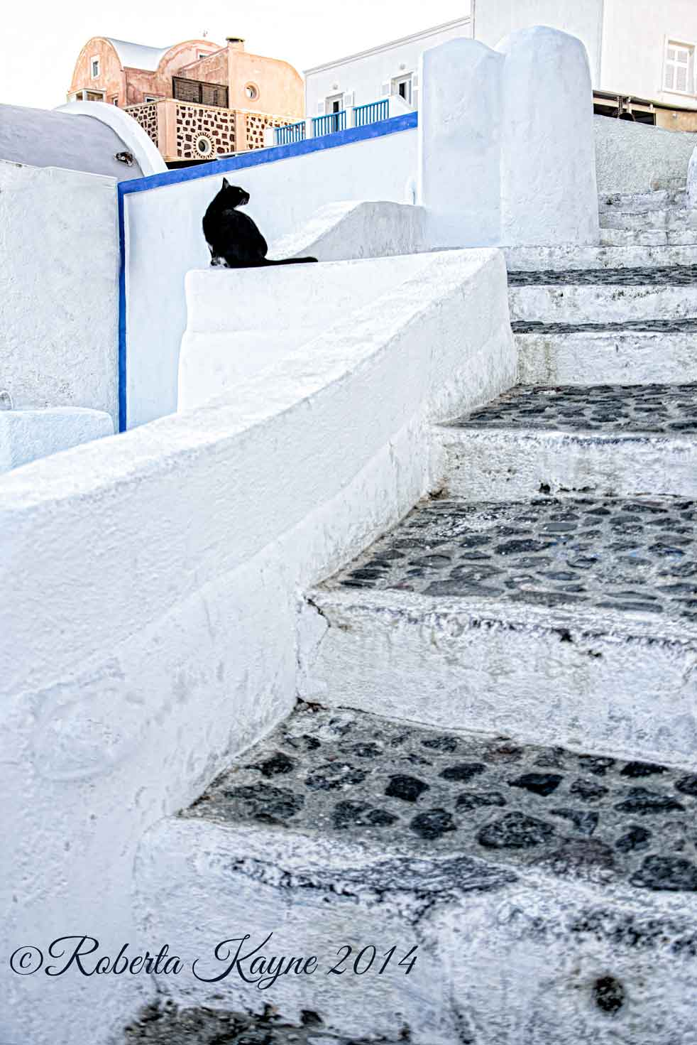 9-13-14-Santorini-2273-cat-on-steps-small-2