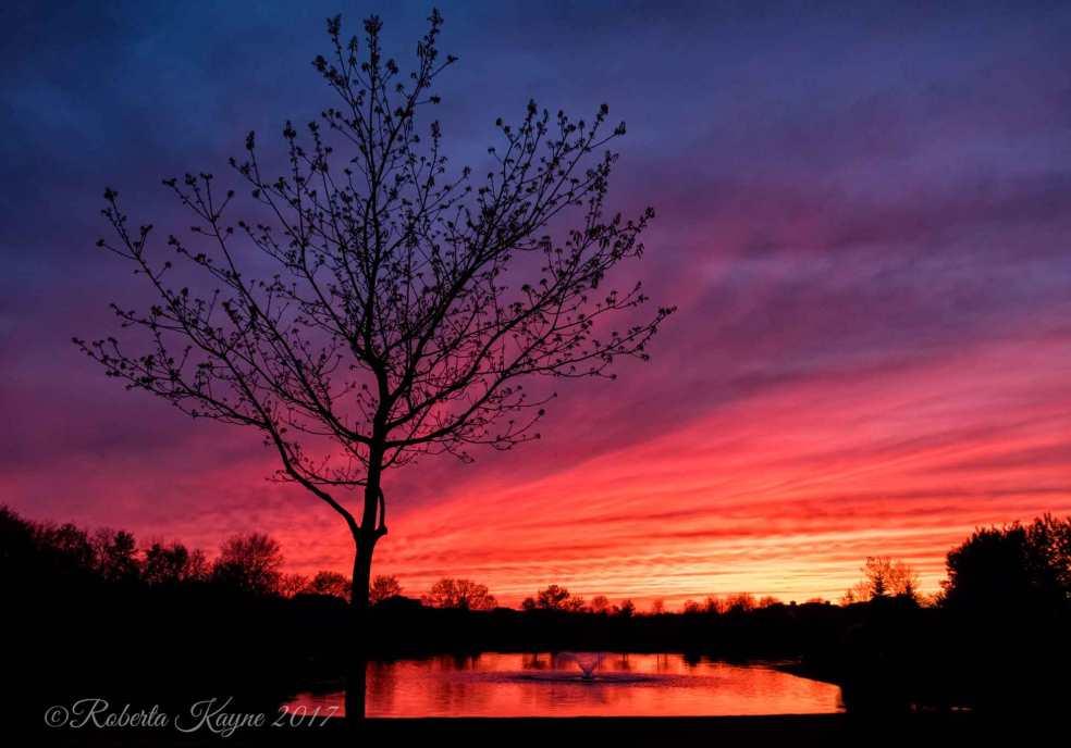 4-17-17-Sunset-Dublin-XT2-2559-small